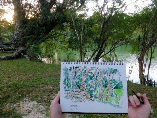 Black Orchid Resort: Sketching the trees and river in front of A4