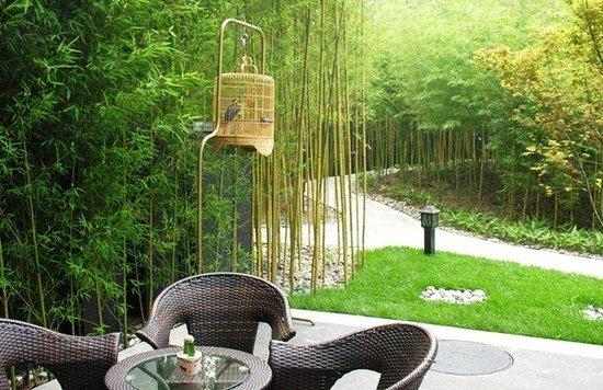 Asia Hotel: Garden