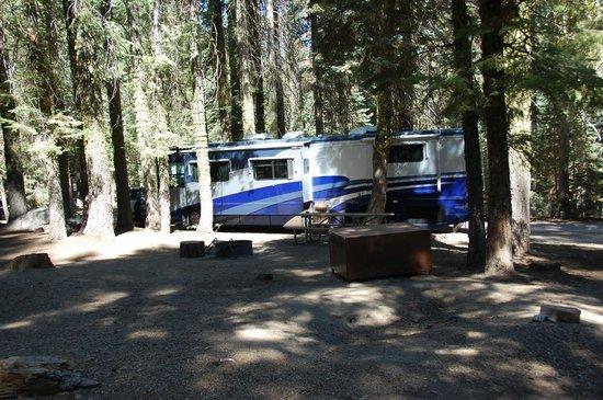 Crane Flat Campground:                   site 215