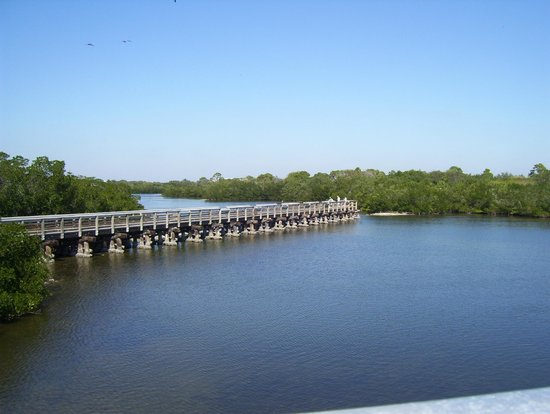 Cape Haze Pioneer Trail Park:                   View of Coral Creek from Gasparilla Rd