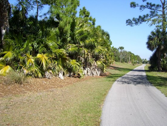 Rotonda West, FL:                   Trail that parallels Gasparilla Rd (golf course to the left)