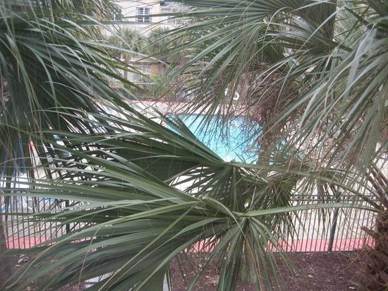 Extended Stay America - Jacksonville - Deerwood Park: Pool from the hallway.