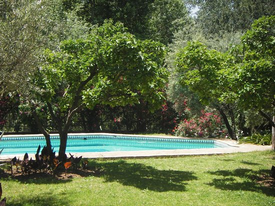Domaine de la Roseraie :                   private swimming-pool
