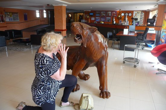 Beatriz Playa & Spa :                                     In the lions den! Part of Reception area.