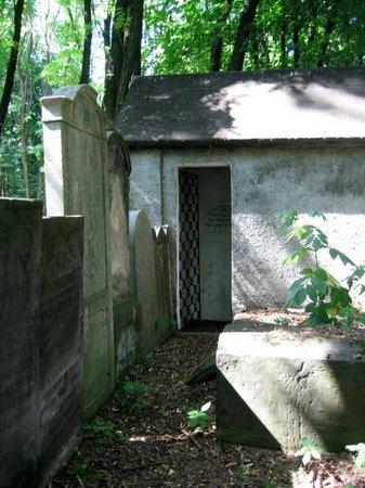 Jewish Cemetery (Cmentarz Zydowski):                   Okopowa Street Jewish Cemetery