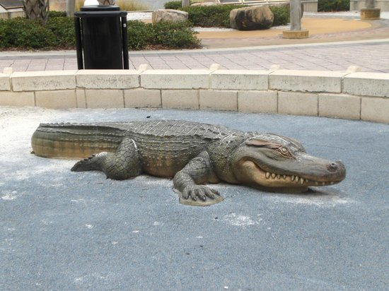 ‪‪Tampa Bay History Center‬: Alligator sculpture on the grounds‬