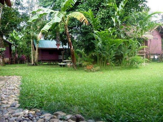 Chez Mango:                   Un bungalow