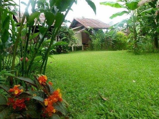 Chez Mango:                   Mon bungalow préféré avec douche et wc