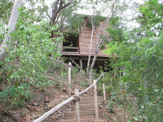Aqua Wellness Resort:                   stairs leading up to our villa
