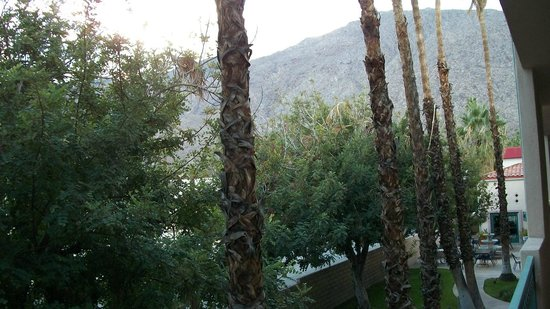 Baymont Inn & Suites Palm Springs:                   View from room