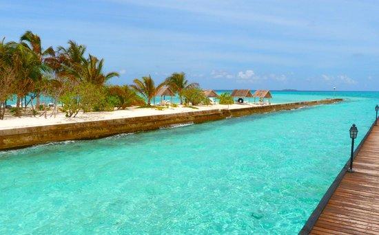 Summer Island Maldives:                   devant les bungalow