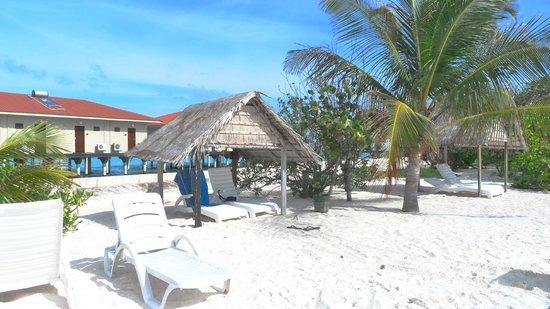 Summer Island Maldives:                   la plage devant les bungalow
