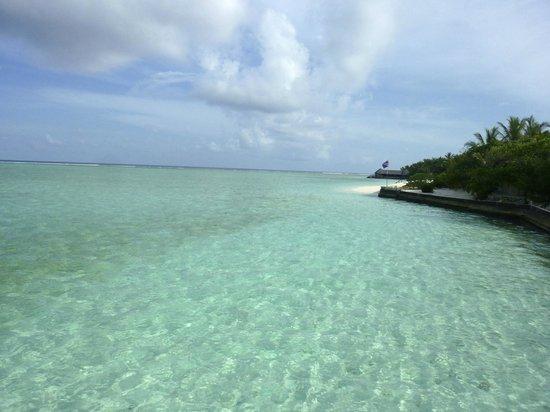 Summer Island Maldives:                   eaux magnifiques
