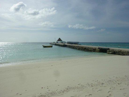 Summer Island Maldives:                   par ou vous arriverez