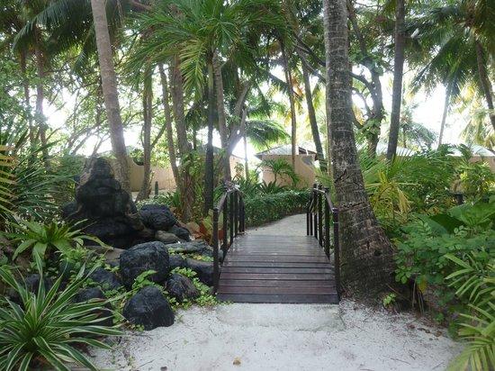 Summer Island Maldives:                   a l'intérieur de l'ile