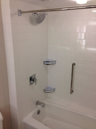 Hilton Atlanta Airport:                   Shower