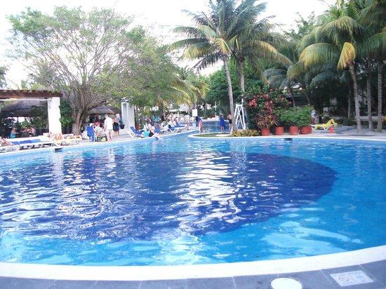 Oasis Palm:                   en la piscina