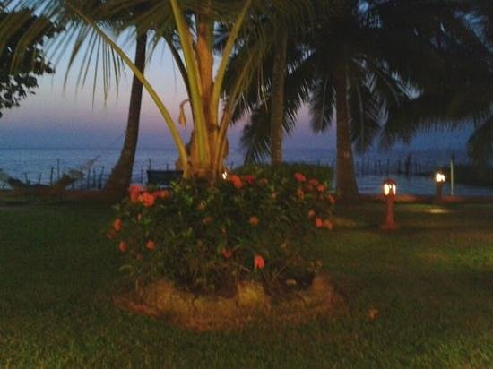 Abad Whispering Palms Lake Resort:                                     evening view from my cottage