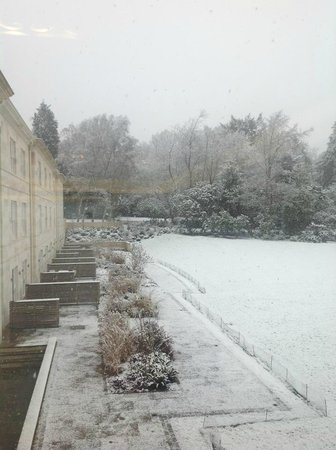 Rudding Park Hotel :                   View from the library
