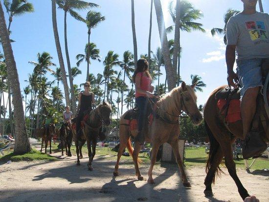 Grand Paradise Samana : Horse trail thru the beach