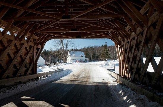 The Hermitage Inn: View through the bridge