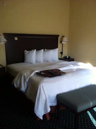 Hampton Inn Los Angeles / Orange County / Cypress: king bed room 128