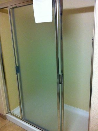 Hampton Inn Los Angeles / Orange County / Cypress: walk in shower room 128
