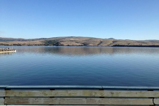 Tomales Bay Resort:                                     View from Bayside Room