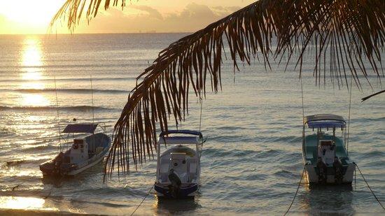 Ocean Plaza:                                     Sunrise