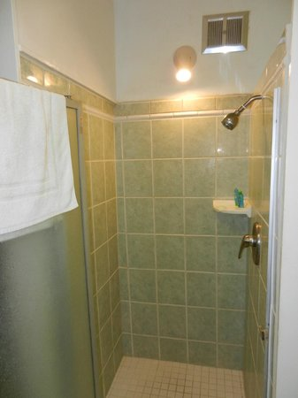 Polynesian Shores:                   Unit #203 Upstairs shower
