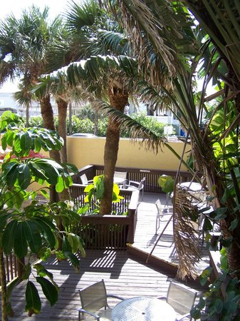 La Quinta Inn & Suites Cocoa Beach Oceanfront:                   from my balcony, love, love, love!