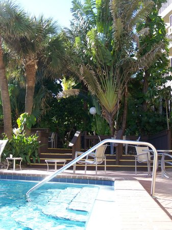 La Quinta Inn & Suites Cocoa Beach Oceanfront:                   pool area again