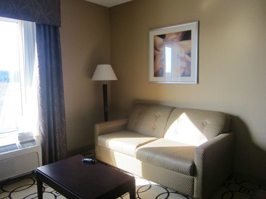 Hampton Inn & Suites Brunswick: Sofa is pull out bed also