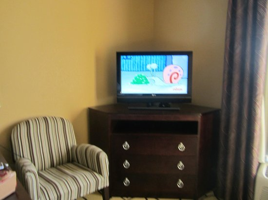 Hampton Inn & Suites Brunswick: Nice TV