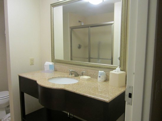 Hampton Inn & Suites Brunswick: Nice Clean bathroom, beautiful sink