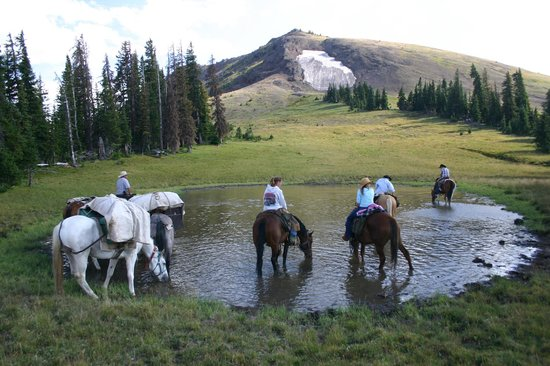 Skyline Guest Ranch and Guide Service: At the foot of Parker Peak
