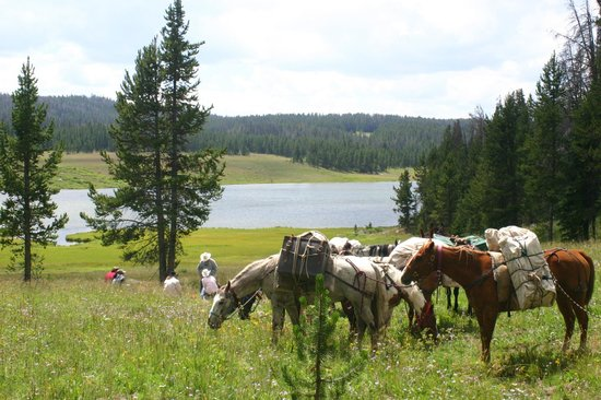Skyline Guest Ranch and Guide Service: Mariposa Lake