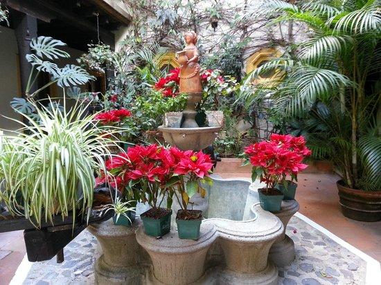 Hotel Posada Del Hermano Pedro: Fuente