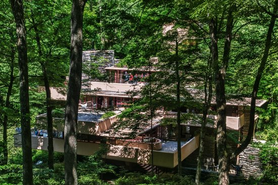 Fallingwater: A View through the Woods