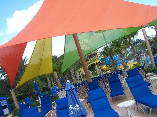 رينيسانس أورلاندو آت سي وورلد: pool area was the best!!