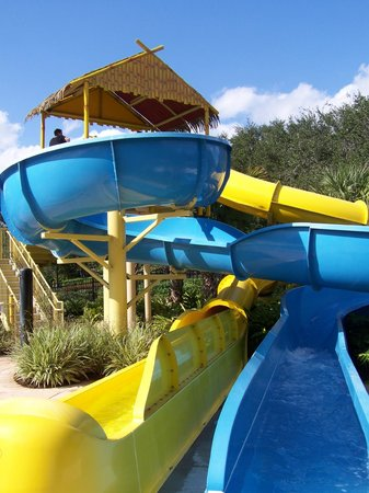 Renaissance Orlando at SeaWorld: waterslides!
