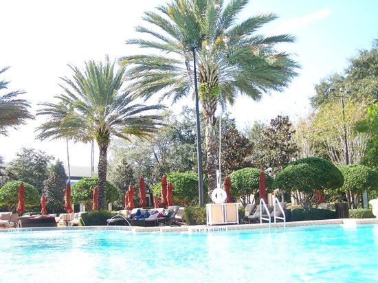 Renaissance Orlando at SeaWorld: other pool area