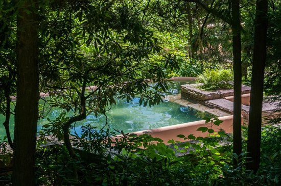 Fallingwater: Pool in the Woods