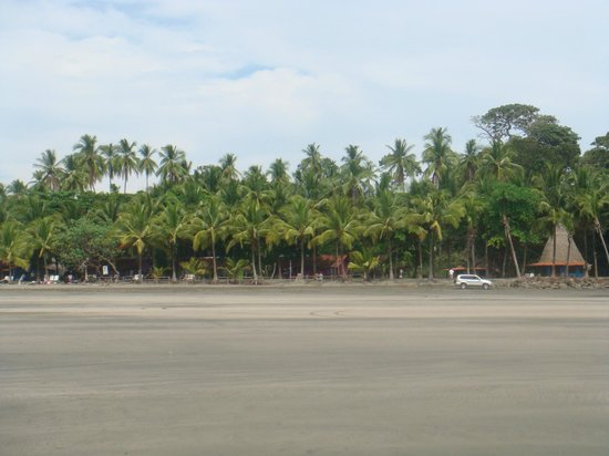 Cabanas Time Out:                   Estero beach