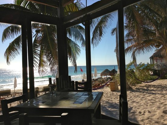 Casa Violeta: dinning room view