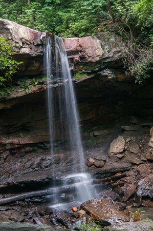 Ohiopyle State Park 사진