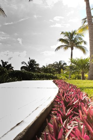 Excellence Playa Mujeres:                   beautiful walkways