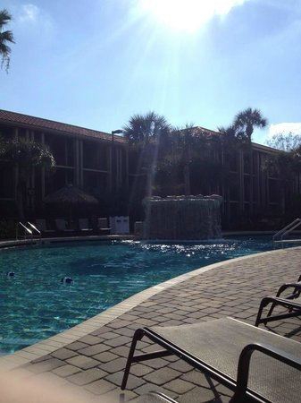 Doubletree by Hilton Orlando at SeaWorld:                   Just one of the pools