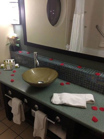Doubletree by Hilton Orlando at SeaWorld:                   Bathroom