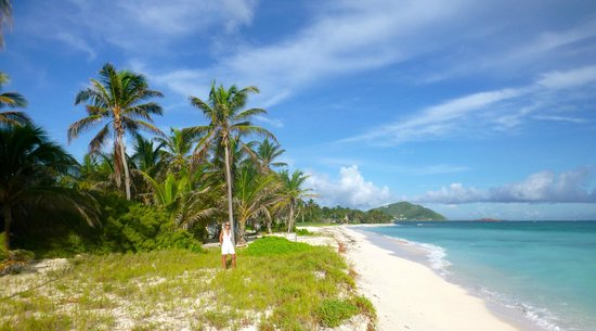 Palm Island Resort & Spa:                   additional beach